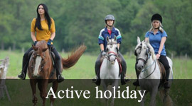/article/active--holiday.html